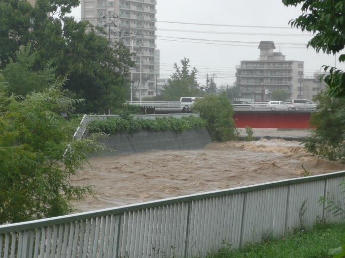 札幌大雨で琴似発寒川が増水し三角波が発生!豊平川も増水。