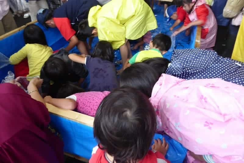 手稲ドジョウ祭 どじょうつかみをする子供たち