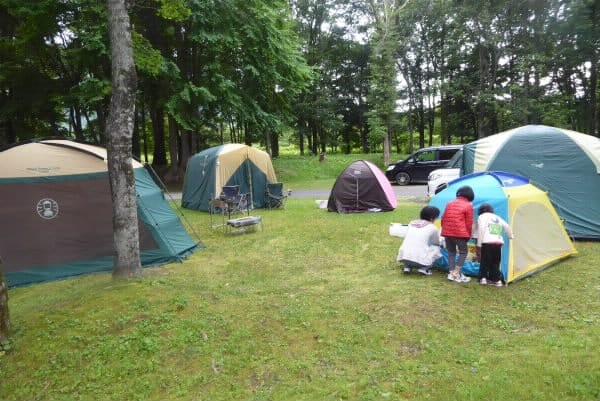 沙流川オートキャンプ場 テントサイト