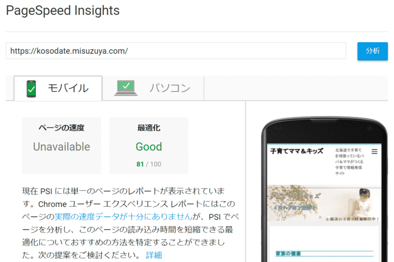 PageSpeed Insights 81点